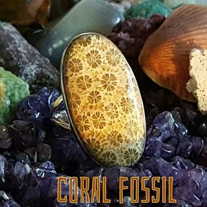 Indonesia Fossil Coral Ring Sterling Silver